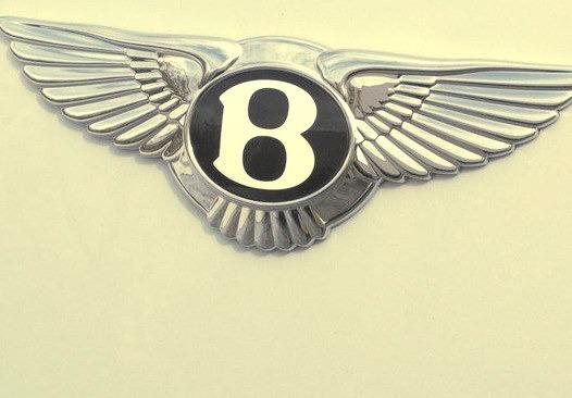 Bentley Logo and Hood Ornament