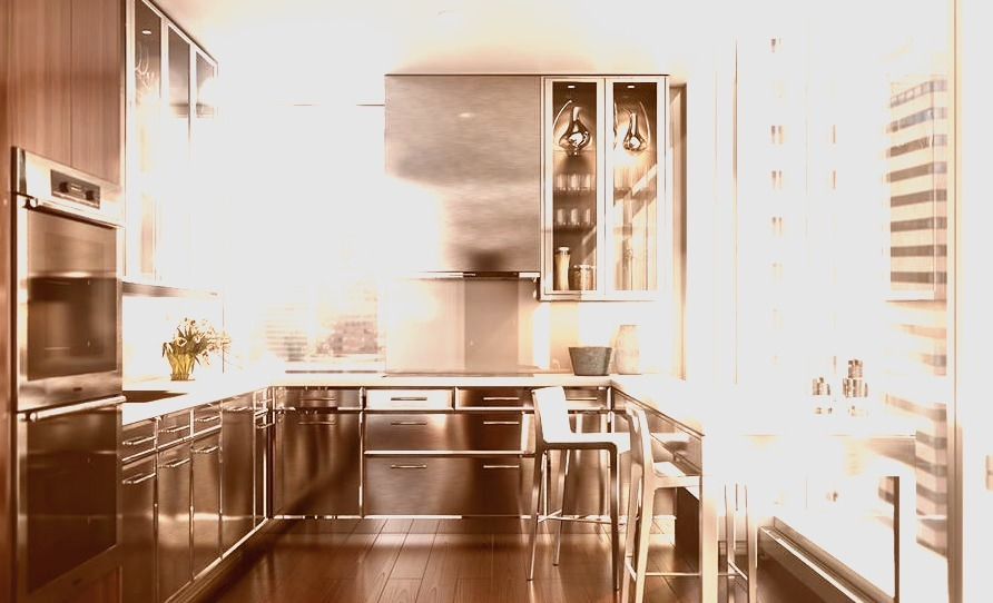 Luxury Kitchen with Stainless Steel